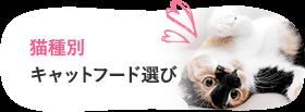 猫種別キャットフード選び