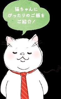 猫ねこさん