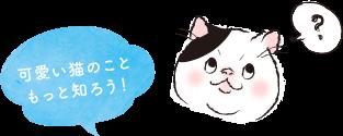 可愛い猫のこともっと知ろう!