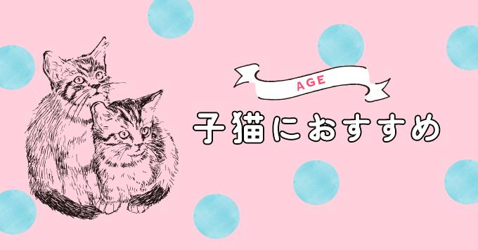 【子猫用】成長期に与えたいおすすめキャットフード5選
