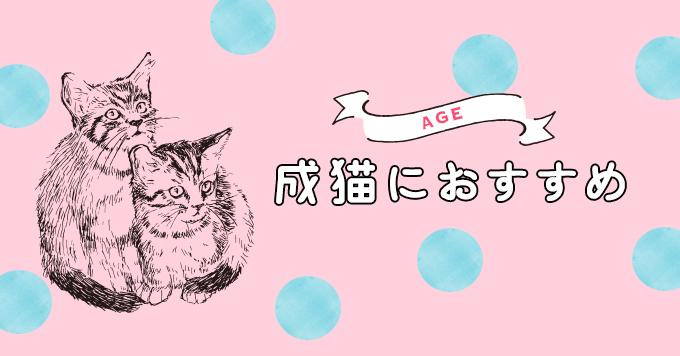 【成猫用】1~6歳の猫に与えたいおすすめキャットフード5選