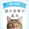 猫の食事の基本 | 1〜6才向け | キャットフードの正しい選び方