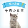 子猫の食事 | 2〜12ヶ月 子猫向けキャットフード