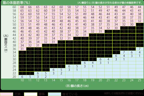 FBMIチェック表