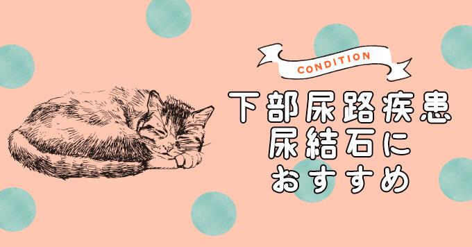 下部尿路疾患(FLUTD)・尿路結石が気になる猫におすすめのキャットフード5選