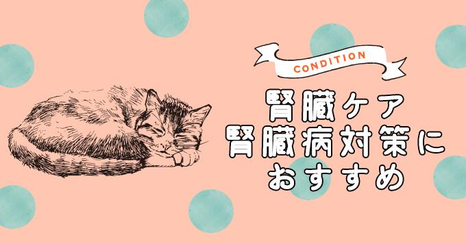 猫の腎臓ケア・腎臓病対策におすすめのキャットフード5選