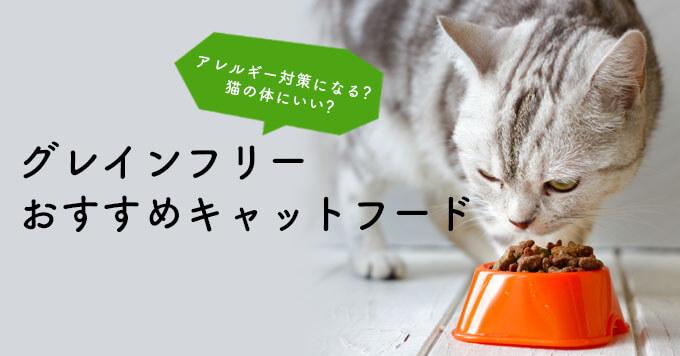 時期 食べる 子猫 カリカリ