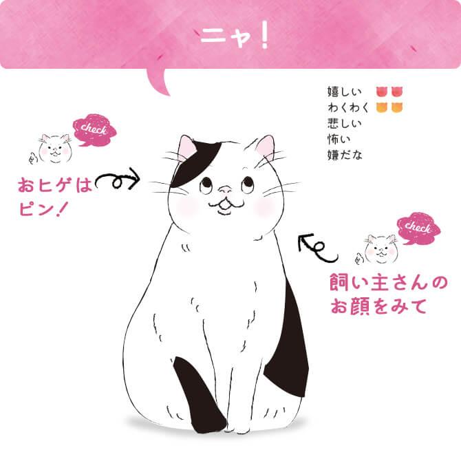 猫語「ニャ!」