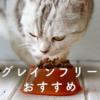 グレインフリーのキャットフードは猫の体にいいの?選び方の注意点とおすすめフード13選