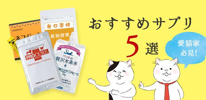 【愛猫家必見】おすすめ猫用サプリメント5選