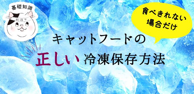 キャットフードの正しい冷凍保存方法と解凍方法