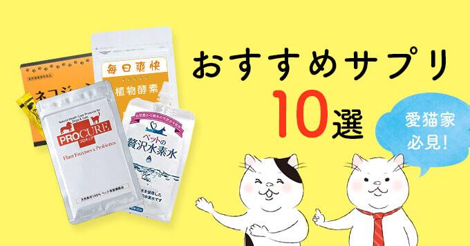 【愛猫家必見】おすすめ猫用サプリメント10選