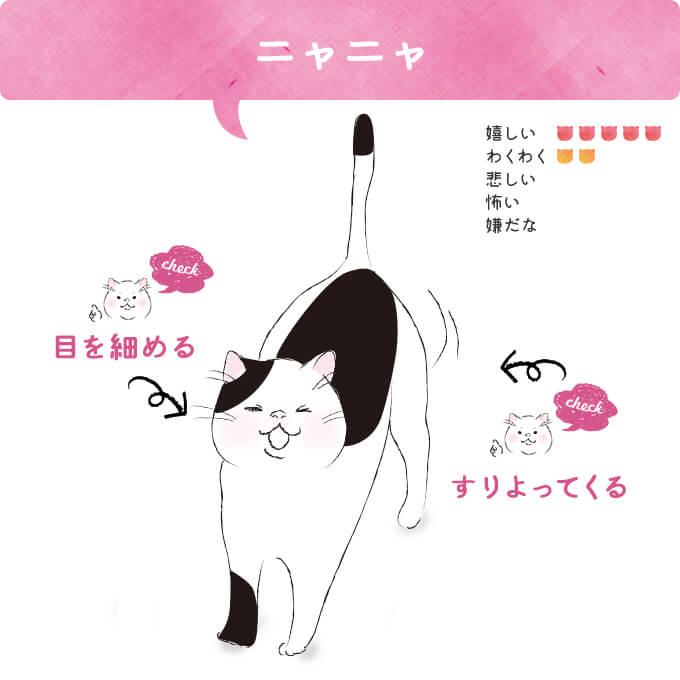 「ニャニャ」| 猫語vol.10