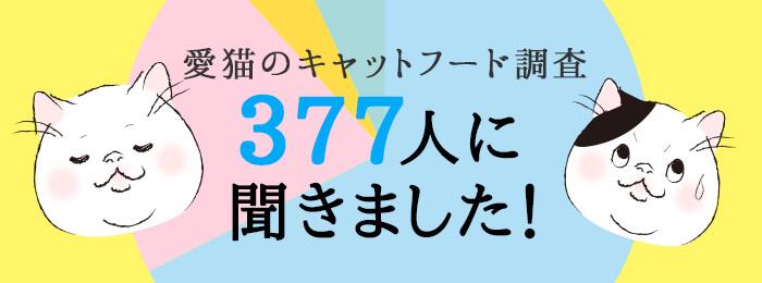 愛猫のキャットフード調査377人に聞きました!