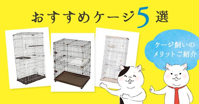 猫をケージ飼いする6つのメリットとおすすめケージ5選