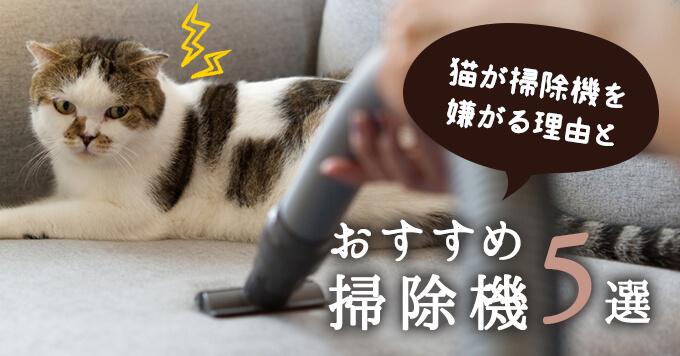 猫が掃除機を嫌がる2つの理由とおすすめ掃除機5選