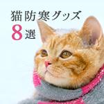 猫が寒さに弱いと言われる3つの理由とおすすめ防寒グッズ8選