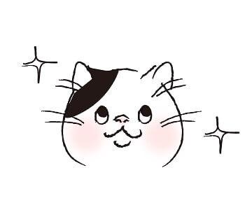 猫目_キラキラ