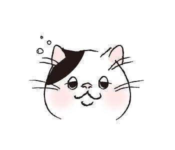 猫目_半目