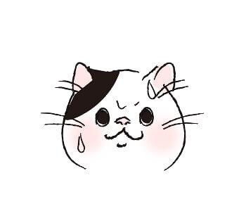 猫目_瞳孔が開いている