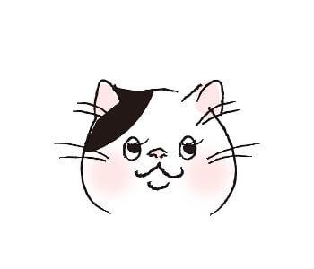 猫目_遠い目