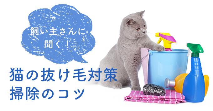 飼い主さんに聞く!猫の抜け毛対策~掃除のコツや便利グッズ紹介