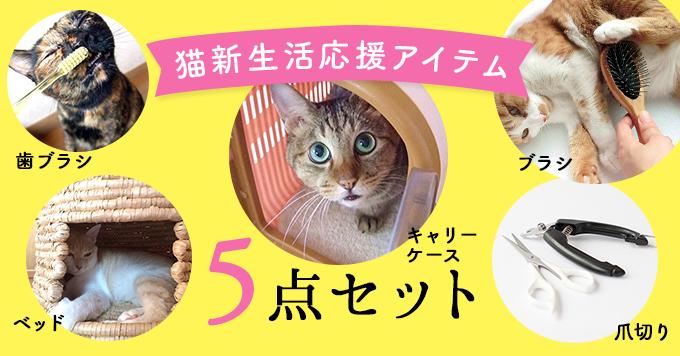 猫新生活応援アイテム5点セット!