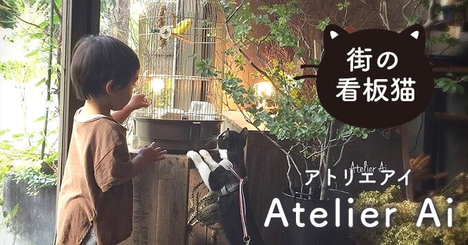 【看板猫】一匹の元保護猫がつなぐ縁~Atelier Ai(アトリエアイ)