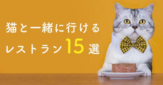 【2020年度版】猫と一緒に行けるレストラン15選