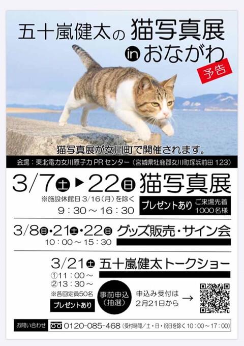 五十嵐健太猫写真展