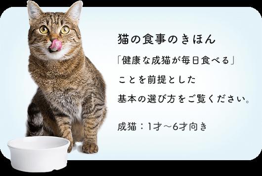 猫の食事のきほん 「健康な成猫が毎日食べる」ことを前提とした基本の選び方をご覧ください。