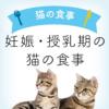 妊娠期・授乳期の食事 | 妊娠・授乳中の猫向けキャットフード