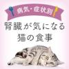 【獣医師監修】腎臓が気になる猫の食事 | 腎臓が気になる猫向けキャットフード