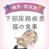 【獣医師監修】下部尿路疾患が気になる猫の食事|下部尿路疾患が気になる猫向けキャッ