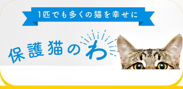 保護猫プロジェクト 保護猫のわ