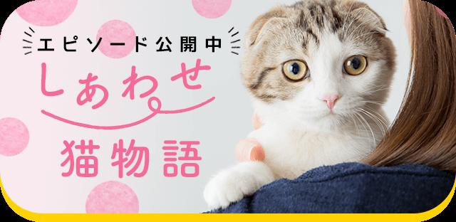 あなたの猫との素敵なエピソード しあわせ猫物語