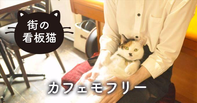"""店主を愛して止まない""""なつ先生""""~猫×本×音楽「カフェモフリー」"""
