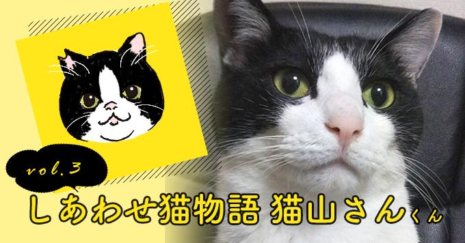 しあわせ猫物語Vol.3|「猫山さん」ー彼が私を選んでくれた