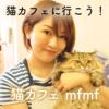 家族のあたたかさがつくりだす猫カフェmfmf~保護猫ちゃんと5匹のスタッフ猫~