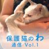 保護猫のわ通信Vol.1|ねこねっと山中湖の保護活動