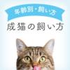 成猫の飼い方