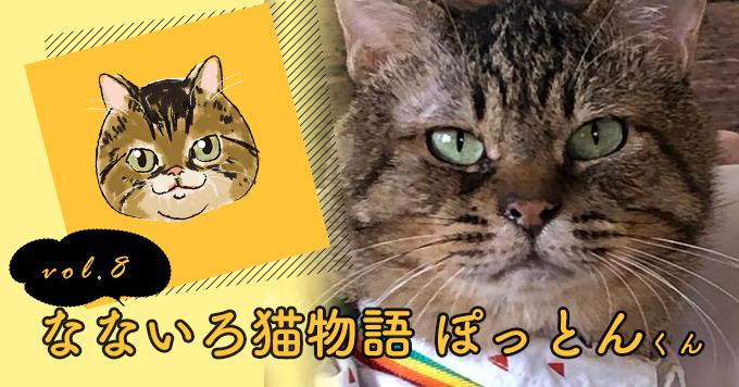 なないろ猫物語Vol.8|「ぽっちゃん」ー後ろ足を切断される経験を乗り越えて