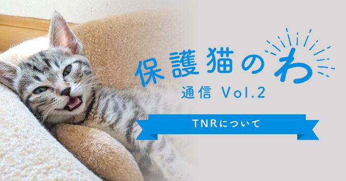 保護猫のわVol.2