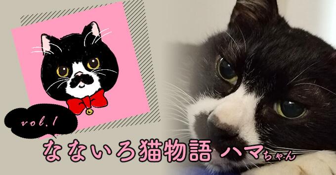なないろ猫物語Vol.1|「ハマ」ー地域猫はまぐりがいたから