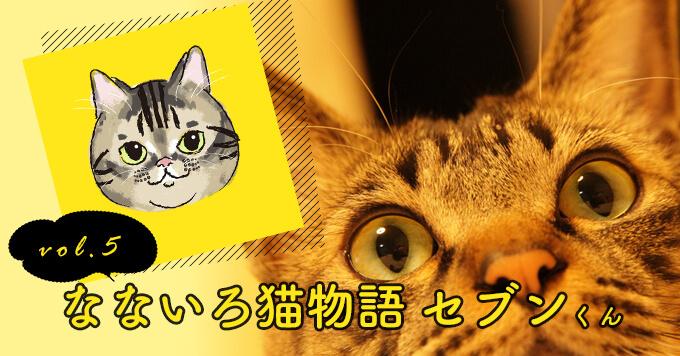 なないろ猫物語Vol.5|「セブン」ー猫と暮らす勇気をもらった