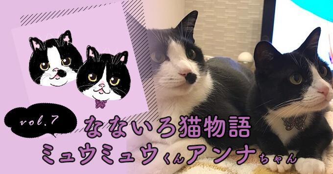 なないろ猫物語Vol.7|「ミュウミュウ&アンナ」ー死の淵にいた2匹を保護して