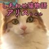 しあわせ猫物語Vol.6|「アリス」ーただ元気でいてくれるだけで