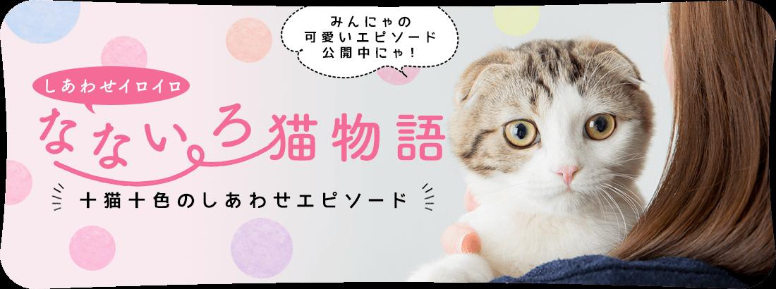 あなたの可愛い猫との素敵なエピソード なないろ猫物語