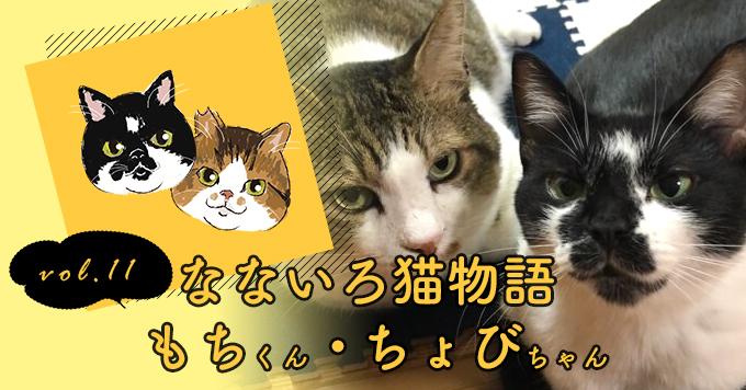 なないろ猫物語Vol.11|2人と2匹が楽しく穏やかに過ごせたら~「もち・ちょび」
