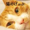 猫のげっぷ